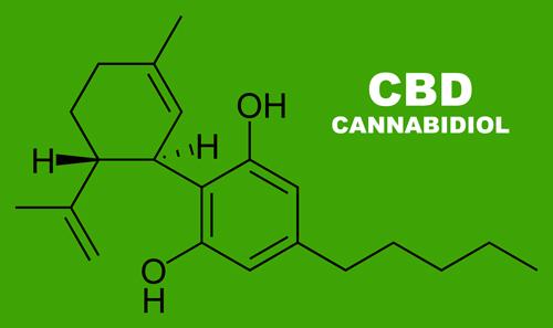 Conoce las Propiedades Antioxidantes del CBD