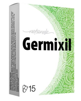 Tratamiento de parásitos intestinales con germixil – folleto, precio, opiniones, foro